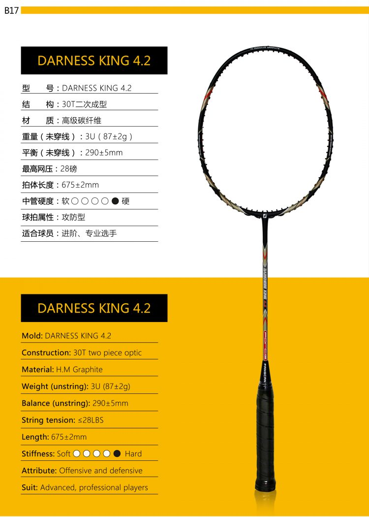 B17_Badminton Racket